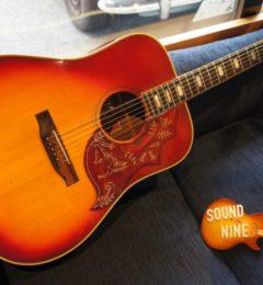 Gibson Hummingbird Custom 1974-1975