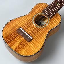 ギターショップサウンドナインお茶の水店 冬ですが愉快にウクレレ弾いてみませんか?