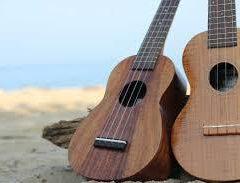 ギターショップサウンドナイン! ウクレレ教室も始めました! 楽器の高価買取はサウンドナイン!