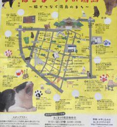 東京湯島のねこまつり!!お店の写真ちょっとお見せしちゃいます!!
