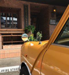 散髪もできるオシャレなカフェ・バーに行ってきました! LIVING STONE in岐阜
